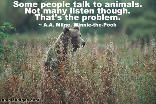animal-quote-14