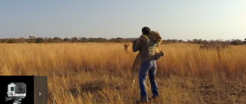 Man who hugs wild lions