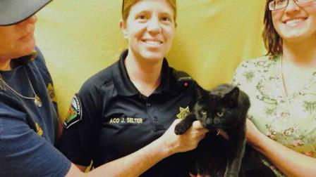 A cat, later named 'Vanity', was rescued from the center divider of the westbound 91 Freeway in Riverside Saturday, March 8, 2014. (https://twitter.com/helpinRIVcoPETS)