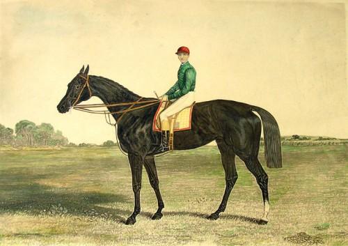 Sefton_(racehorse)