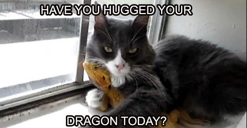 bearded-dragon-hugs